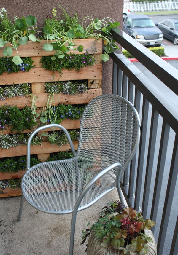 Completed pallet garden