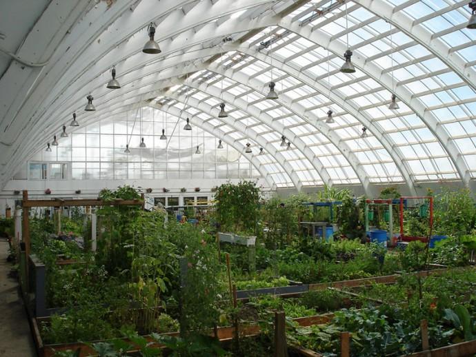 greenhouse01lg
