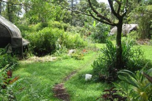 Build A Permaculture Business