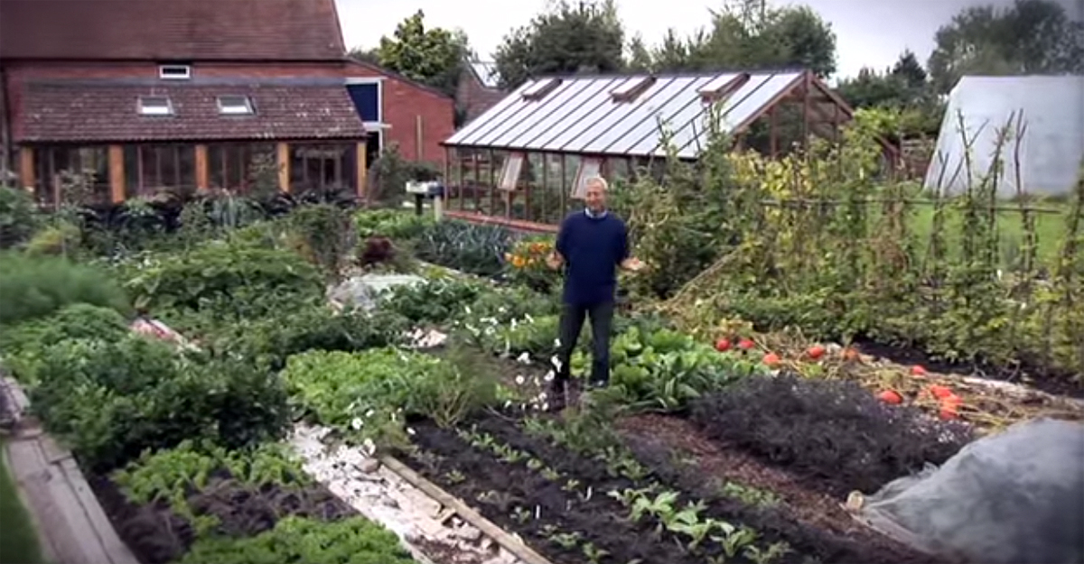 How To Turn A Quot Dead Quot Lawn Into An Abundant Living Garden