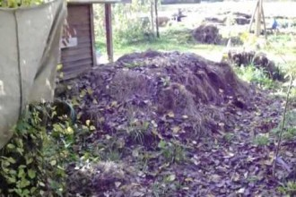 How To Heat 500 Showers From One Small Compost Pile