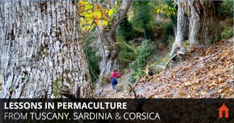 Lessons in Permaculture