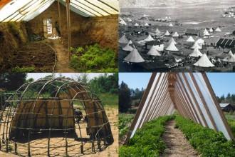 Cheap DIY Greenhouses