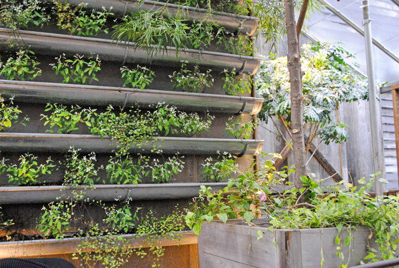 Vertical Garden Design Ideas Gutter vertical garden