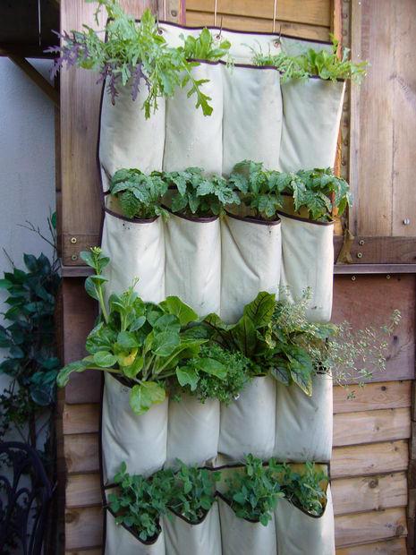 Pouch garden