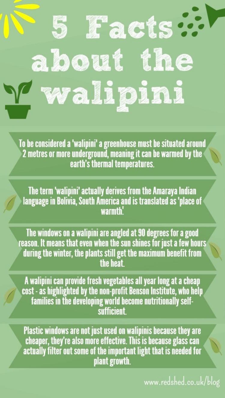 Walipini Infographic