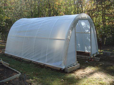$50 greenhouse