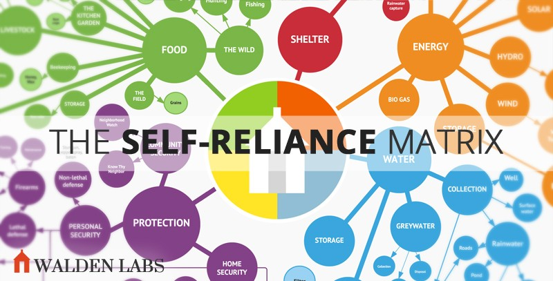 161 Aspects of Self-Reliance In One Massive Chart