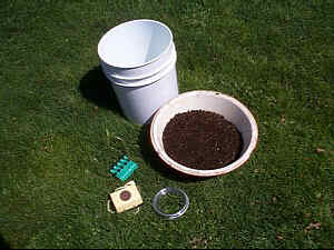 Will Compost Tea Supercharge Your Garden?