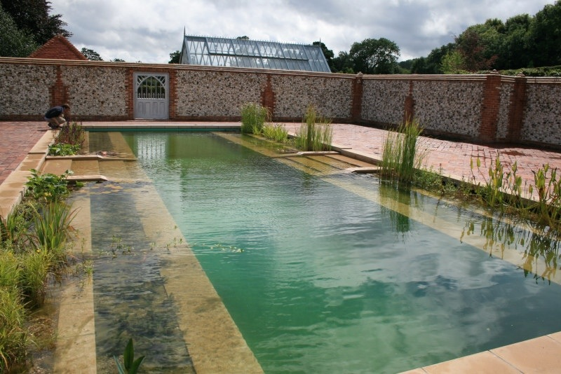 A Natural Swimming Pool That Works for You