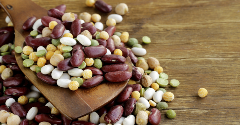 Essential Sources of Protein For Resilient Vegetarians