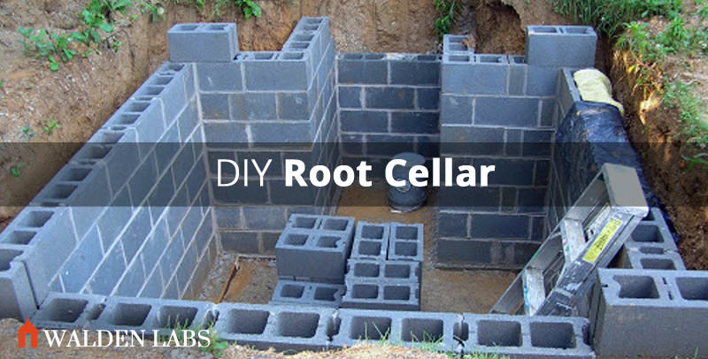 How To Build A Root Cellar In 7 Steps Walden Labs