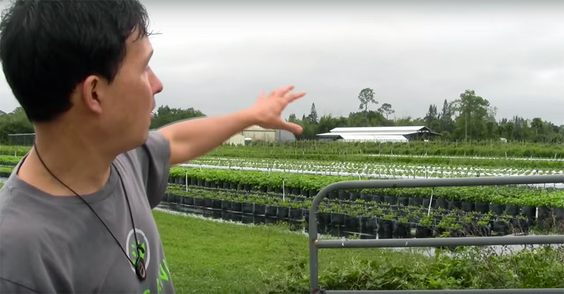 Hydroponic Farm Grows 350 Varieties of Vegetables with 90 minerals
